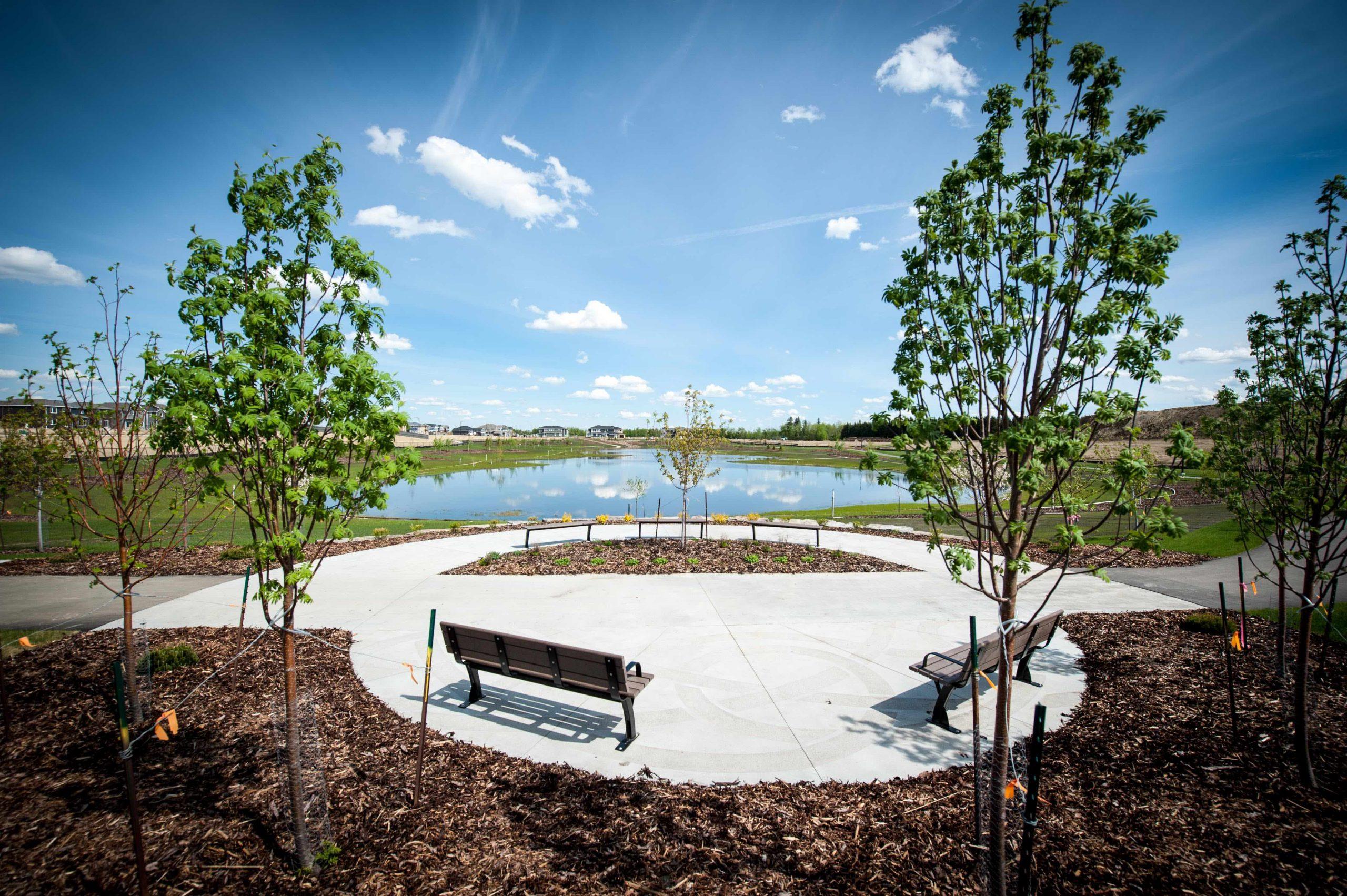 Summer Pond Views